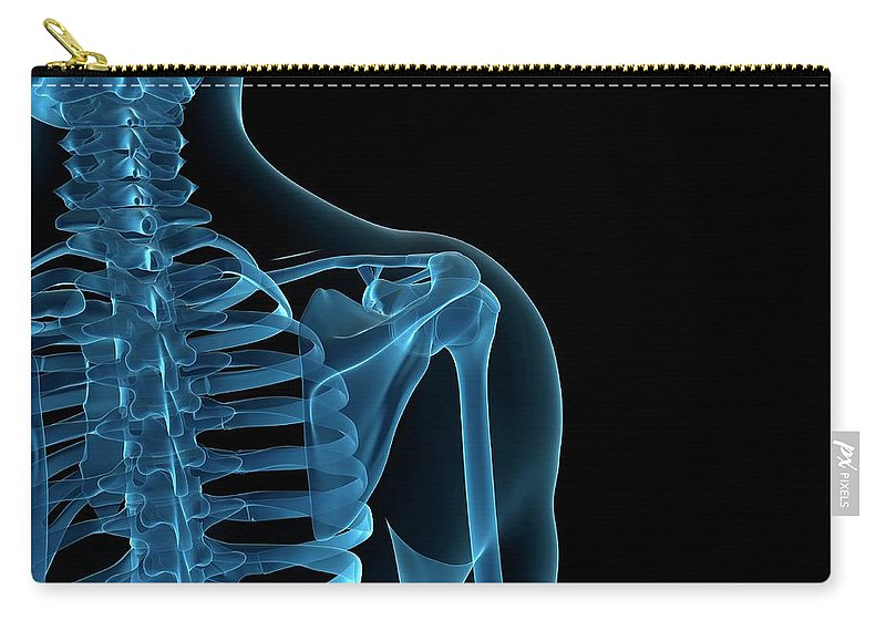 Anatomy Carry-all Pouch featuring the digital art Upper Body Bones, Artwork by Sciepro