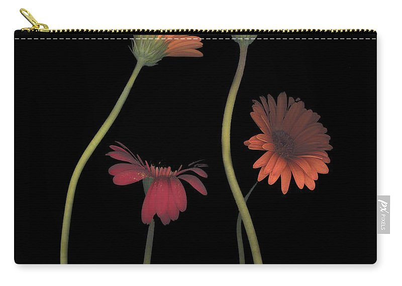 Black Carry-all Pouch featuring the photograph 4daisies On Stems by Heather Kirk