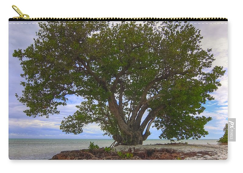 Florida Carry-all Pouch featuring the photograph Anne's Beach-1 by Rudy Umans
