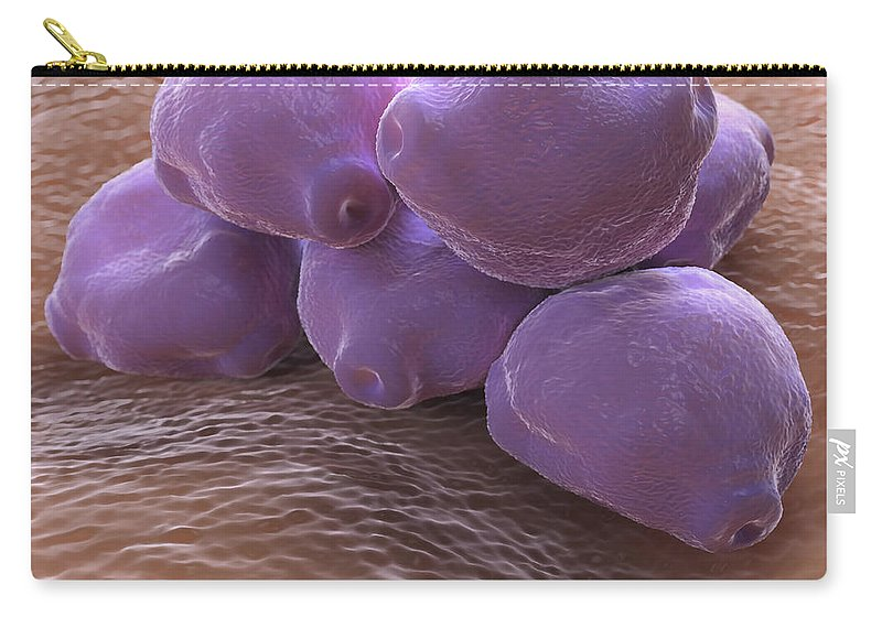 3d Visualisation Carry-all Pouch featuring the photograph Birch Tree Pollen by Science Picture Co