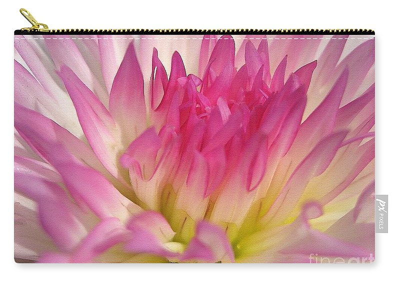Dahlia Carry-all Pouch featuring the painting Dahlia Named Star Elite by J McCombie