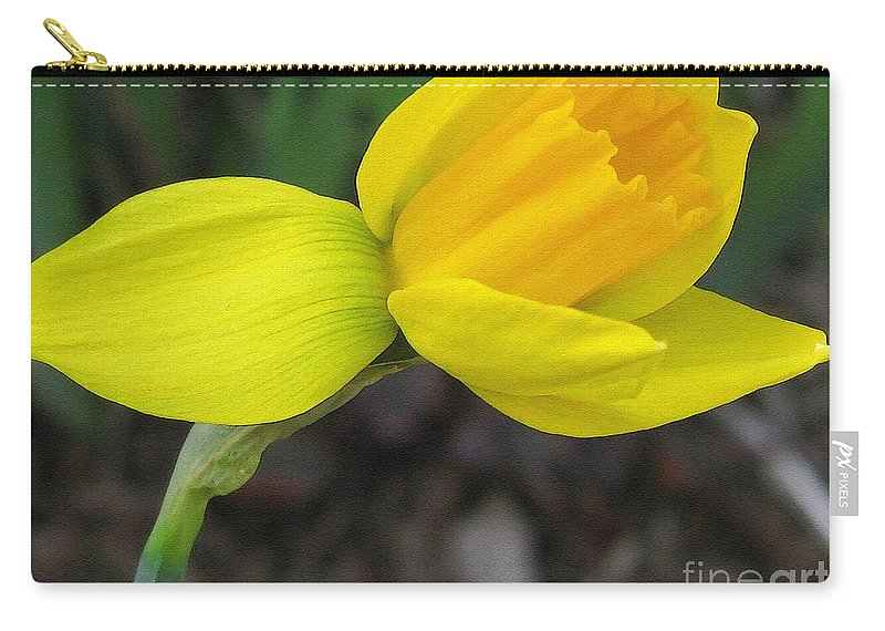Mccombie Carry-all Pouch featuring the painting Dwarf Cyclamineus Daffodil Named Jet Fire by J McCombie