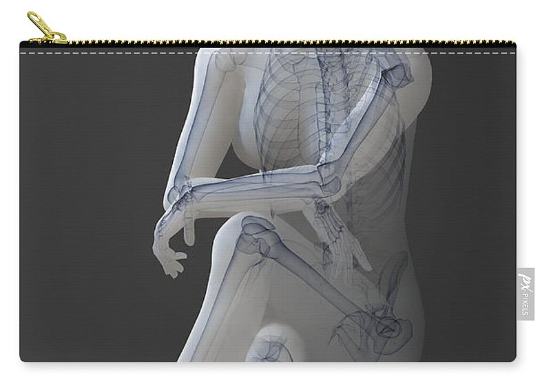 Transparent Carry-all Pouch featuring the photograph Female Anatomy by Science Picture Co