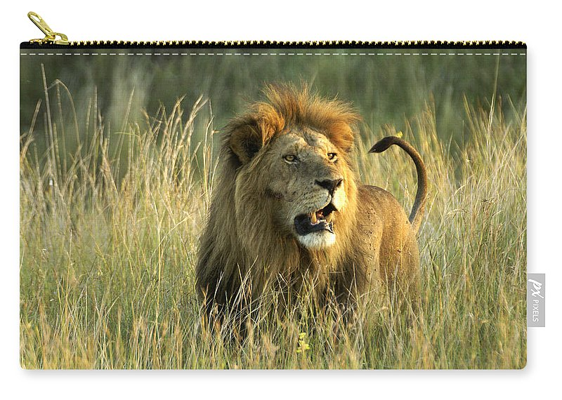Lion Carry-all Pouch featuring the photograph King Of The Savanna by Michele Burgess