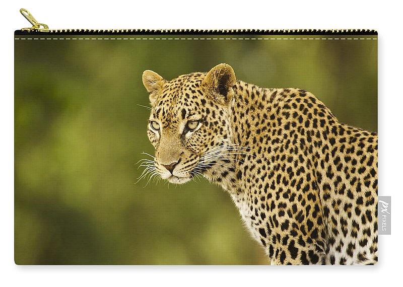 Africa Carry-all Pouch featuring the photograph Lovely Leopard by Michele Burgess