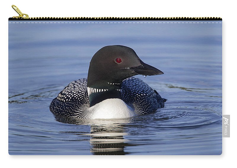 Doug Lloyd Carry-all Pouch featuring the photograph Profile by Doug Lloyd