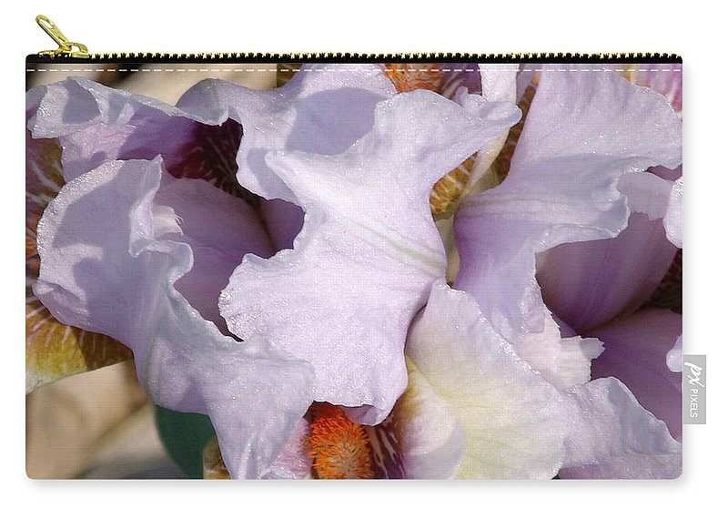 Purple Carry-all Pouch featuring the photograph Purple Iris by David Hohmann