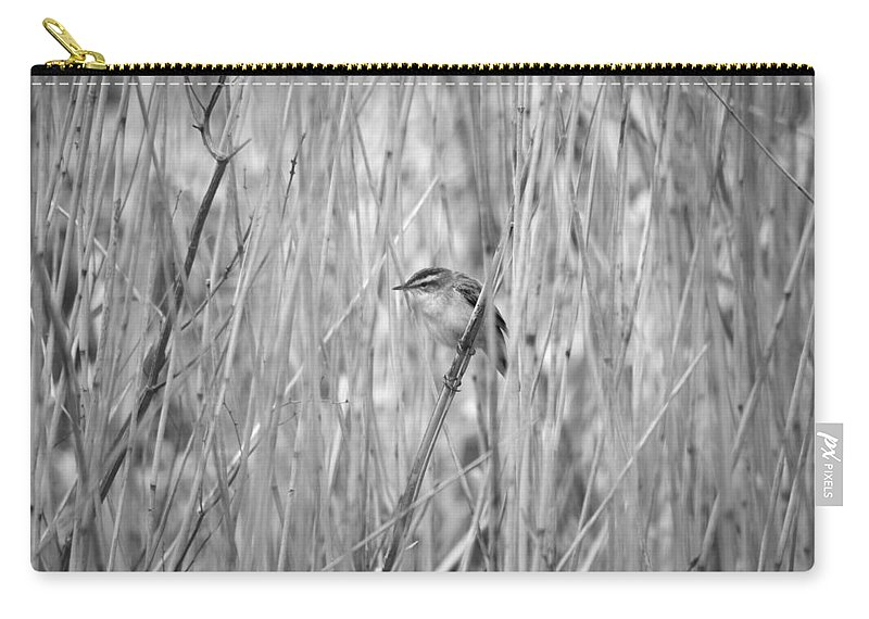 Lehto Carry-all Pouch featuring the photograph Sedge Warbler by Jouko Lehto