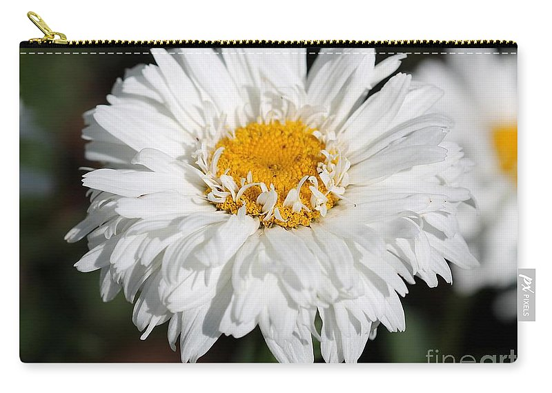 Mccombie Carry-all Pouch featuring the photograph Shasta Daisy Named Paladin by J McCombie