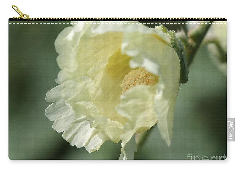 Mccombie Carry-all Pouch featuring the photograph Single Buttercream Hollyhock by J McCombie