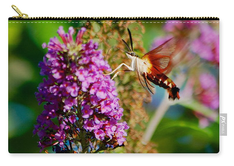 Butterfly Bush Carry-all Pouch featuring the photograph Snowberry Clearwing Hummingbird Moth by Mark Dodd