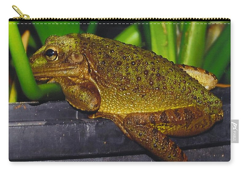 I'm Bored Carry-all Pouch featuring the photograph Treefrog by Robert Floyd