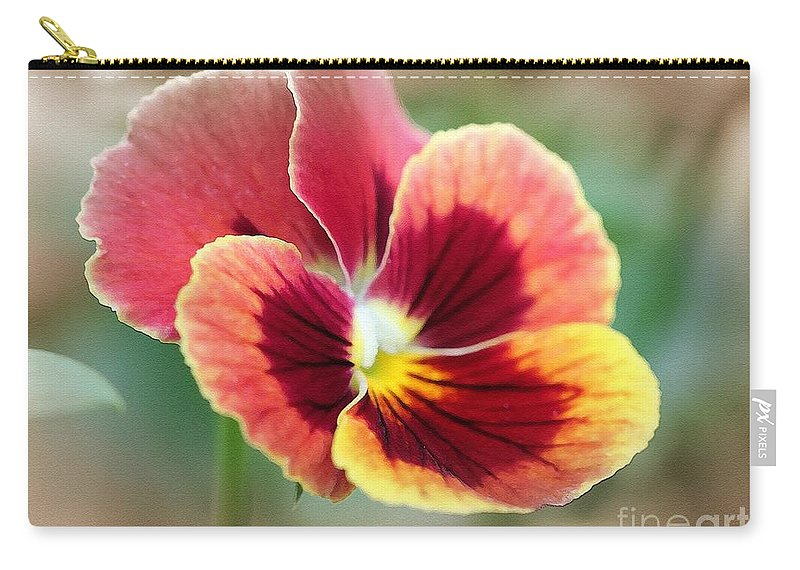 Mccombie Carry-all Pouch featuring the painting Viola Named Penny Red Blotch by J McCombie