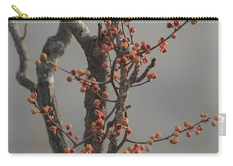 Nature Carry-all Pouch featuring the photograph 569 by Rrea Brown