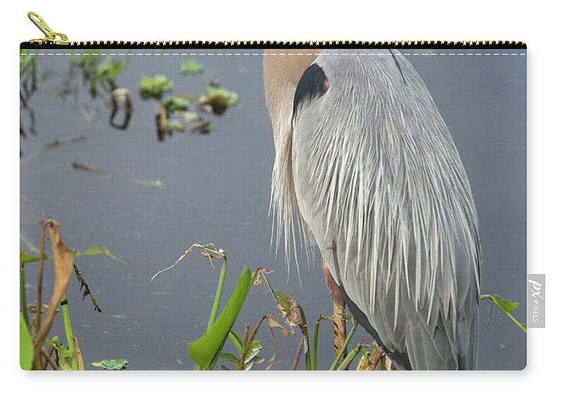 Standing Water Carry-all Pouch featuring the photograph Great Blue Heron by Mark Newman