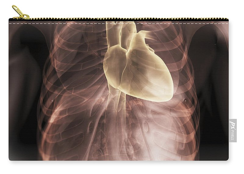 Digitally Generated Image Carry-all Pouch featuring the photograph Heart Within The Chest by Science Picture Co