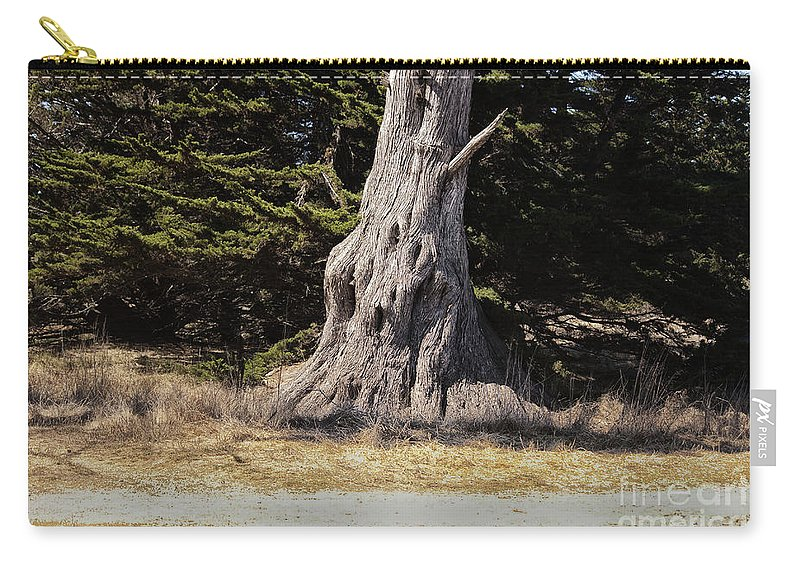 Print Carry-all Pouch featuring the photograph 668 Det The Old Tree by Chris Berry