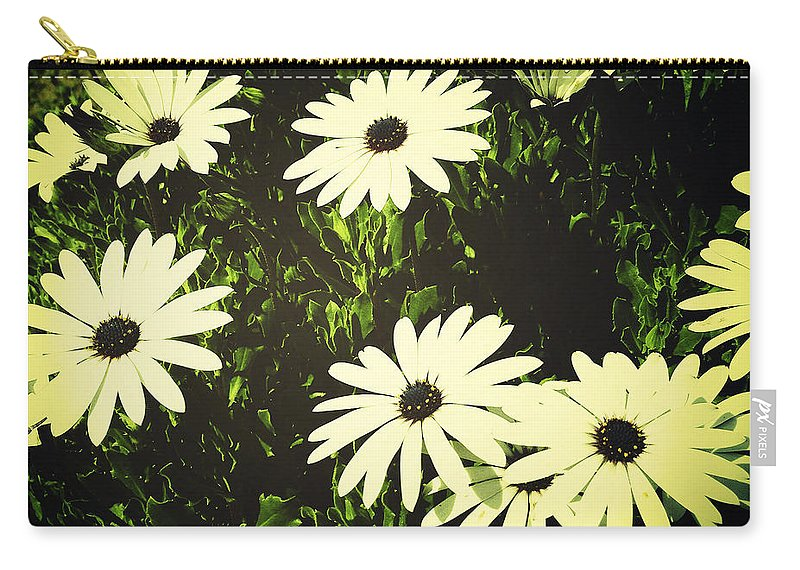 Bloom Carry-all Pouch featuring the photograph Daisies by Les Cunliffe
