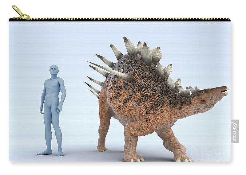Human Carry-all Pouch featuring the photograph Dinosaur Kentrosaurus by Science Picture Co