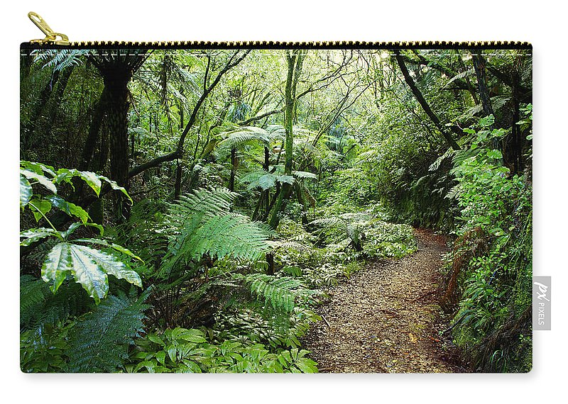 Bush Carry-all Pouch featuring the photograph Forest Trail by Les Cunliffe