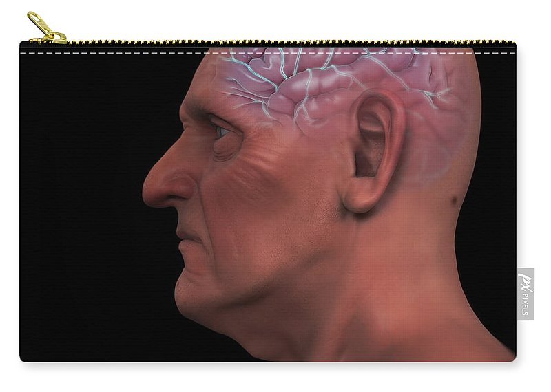 Internal Organs Carry-all Pouch featuring the photograph Geriatric Brain by Science Picture Co