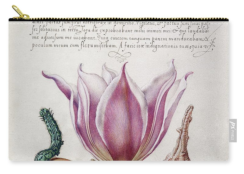 1561 Carry-all Pouch featuring the painting Illuminated Manuscript by Granger