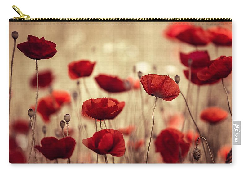 Poppy Carry-all Pouch featuring the photograph Summer Poppy by Nailia Schwarz