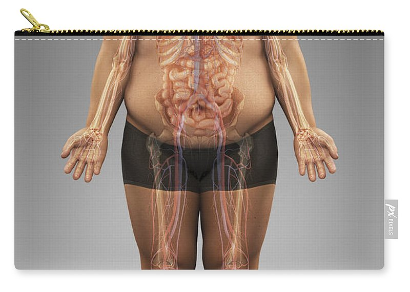 Obesity Carry-all Pouch featuring the photograph Obesity by Science Picture Co