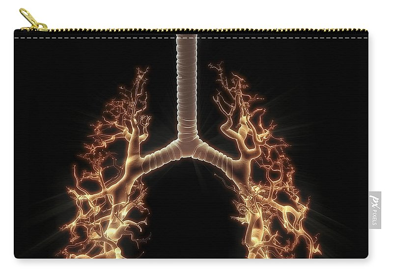 Anatomical Model Carry-all Pouch featuring the photograph Bronchial Branches by Science Picture Co