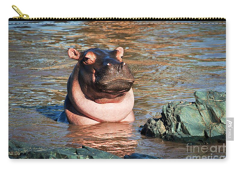 Hippo Carry-all Pouch featuring the photograph Hippopotamus In River. Serengeti. Tanzania by Michal Bednarek