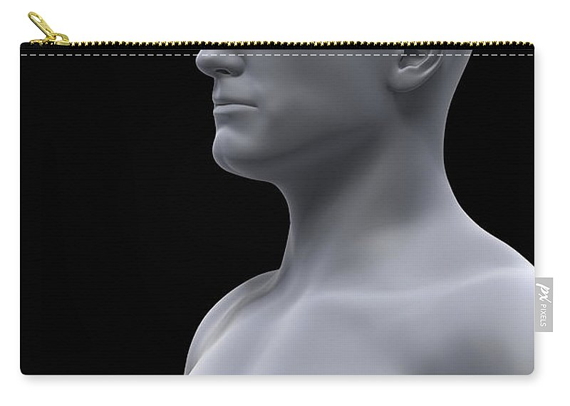 Dermis Carry-all Pouch featuring the photograph Integumentary System Male by Science Picture Co