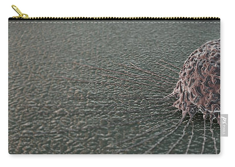 Cells Carry-all Pouch featuring the photograph Breast Cancer Cell by Science Picture Co