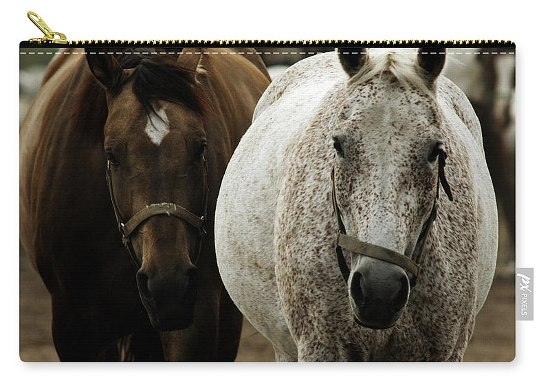 Horse Carry-all Pouch featuring the photograph Horses by Angel Ciesniarska
