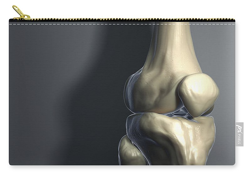 Knee Cap Carry-all Pouch featuring the photograph Knee Bones by Science Picture Co