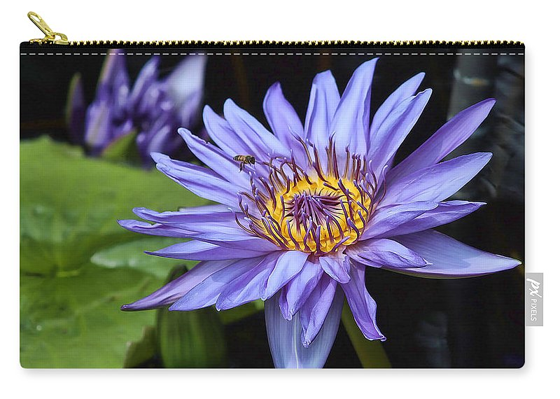 Water Lily Carry-all Pouch featuring the photograph Water Lily by Joyce Baldassarre