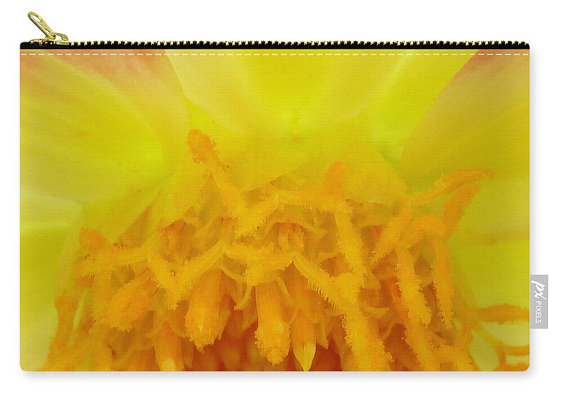 Flower Carry-all Pouch featuring the photograph A Bee's Eye View by Steve Taylor