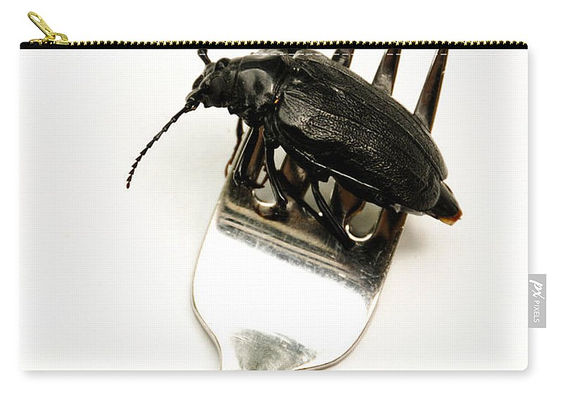 Absurd Carry-all Pouch featuring the photograph A Bite Of Water Bug by Amy Cicconi