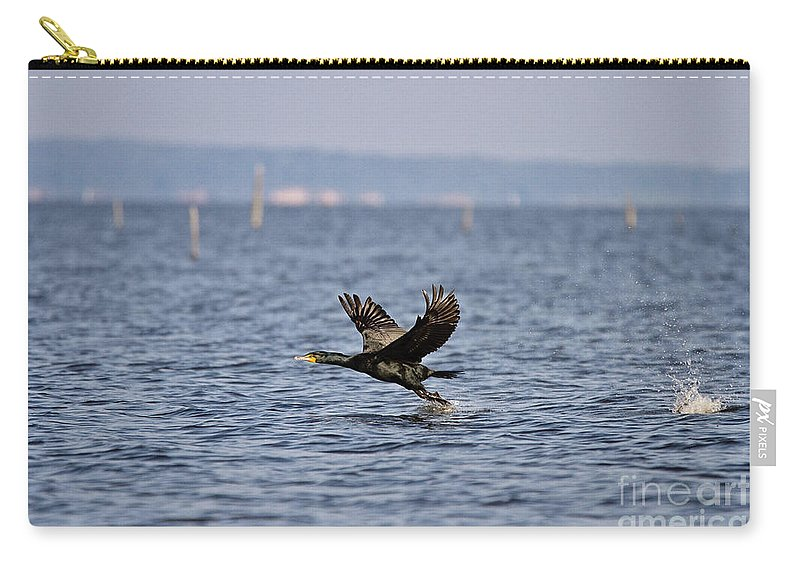 Bird Carry-all Pouch featuring the photograph A Bumpy Take Off by Scott Pellegrin