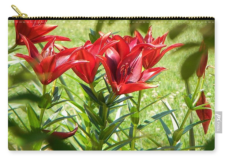 Flowers Carry-all Pouch featuring the photograph A Burst Of Red by Jean Goodwin Brooks