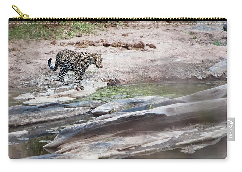 Tranquility Carry-all Pouch featuring the photograph A Cheetah Stands At The Edge Of The by Diane Levit / Design Pics