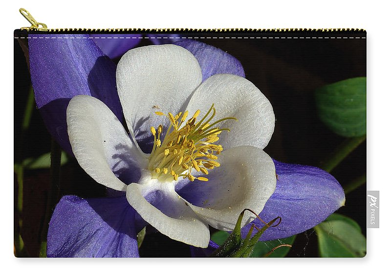 Artwork Carry-all Pouch featuring the photograph A Columbine by Ernie Echols