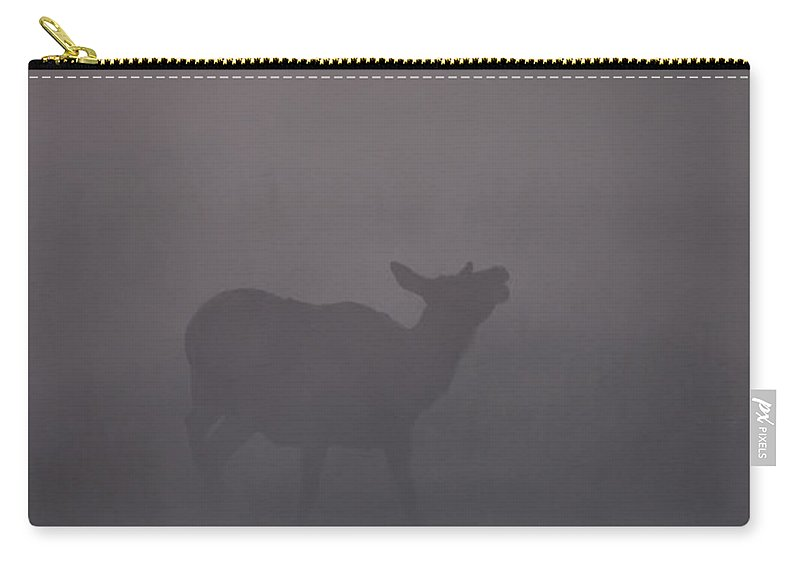 Cow Carry-all Pouch featuring the photograph A Cow Elk Calls In The Early Morning Mist by Gary Langley