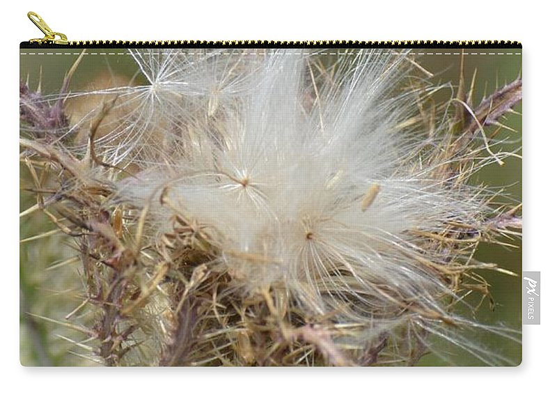A Feather's Weight In Gold Carry-all Pouch featuring the photograph A Feather's Weight In Gold by Maria Urso