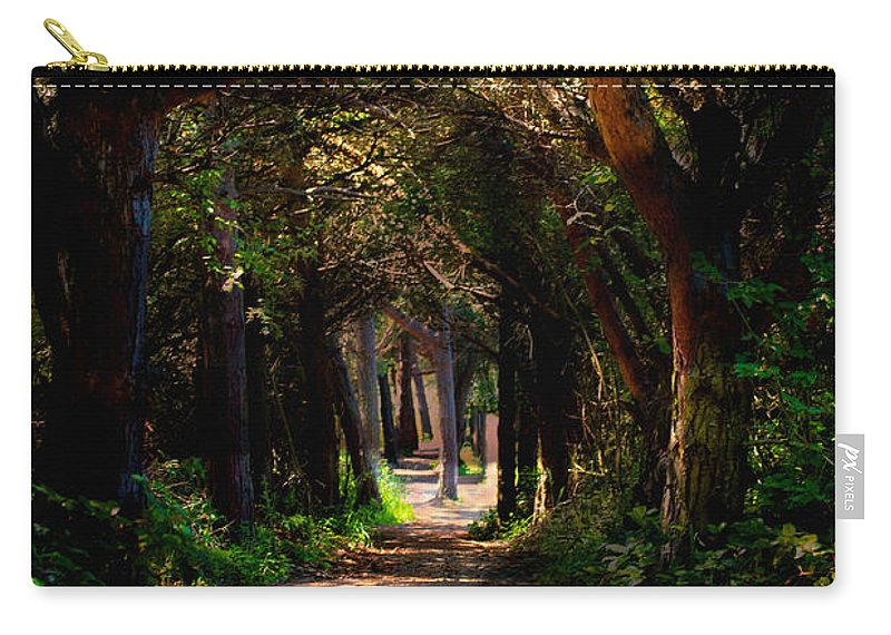 Forest Carry-all Pouch featuring the photograph A Forest Path -dungeness Spit - Sequim Washington by Marie Jamieson