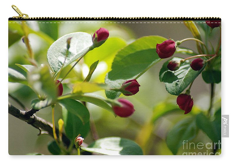 Red Flowers Carry-all Pouch featuring the photograph A Group Of Red Tree Flowers by Optical Playground By MP Ray