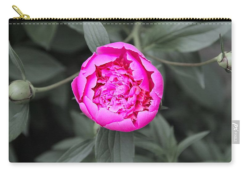 A Hint Of Pink In The Garden Carry-all Pouch featuring the photograph A Hint Of Pink In The Garden by Dan Sproul