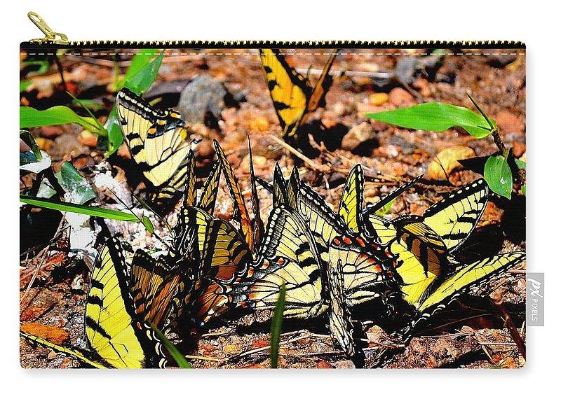 Cascade Carry-all Pouch featuring the photograph A Kaleidoscope Of Butterflies by Tara Potts
