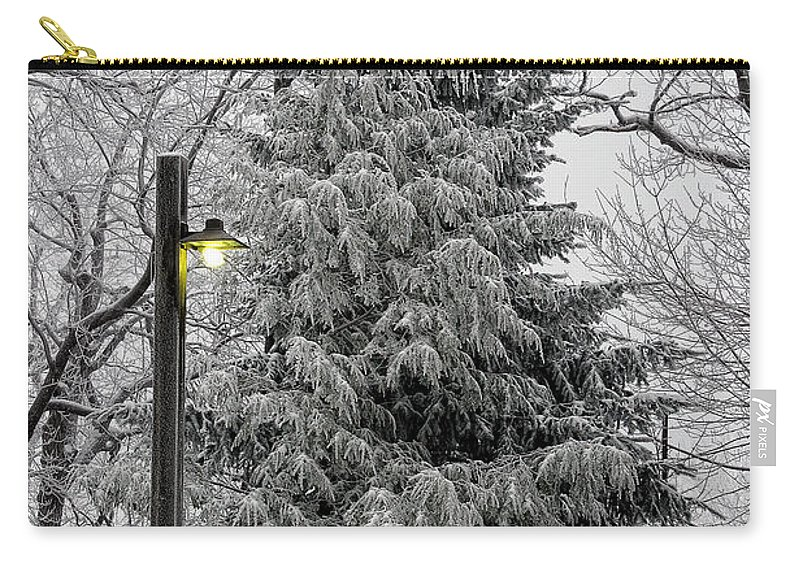 Snow Carry-all Pouch featuring the photograph A Light Snow by Lois Bryan