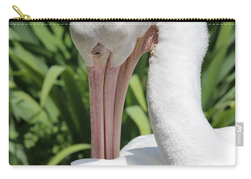 Birds Carry-all Pouch featuring the photograph A Little Itch by Tiffany Erdman