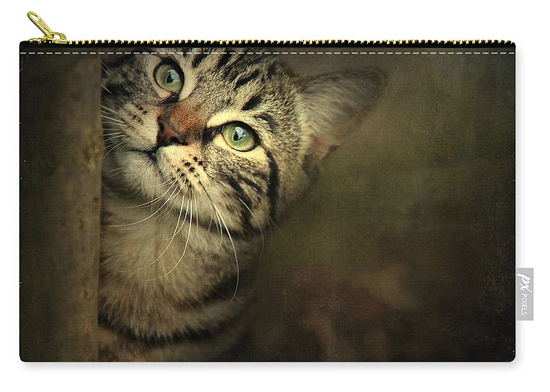 Kitten Carry-all Pouch featuring the photograph A Little Shy by Annie Snel
